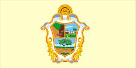 Bandeira_de_Manaus
